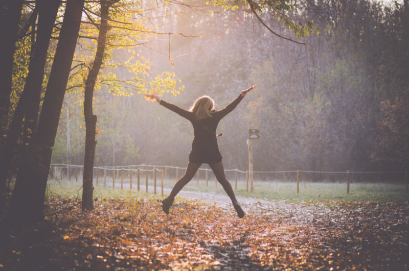 gratitude and the law of attraction